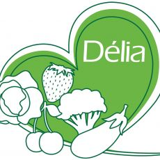 - Délia